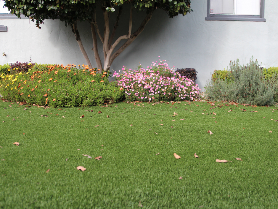 Artificial turf cost avocado heights california roof top for Cost to landscape front yard