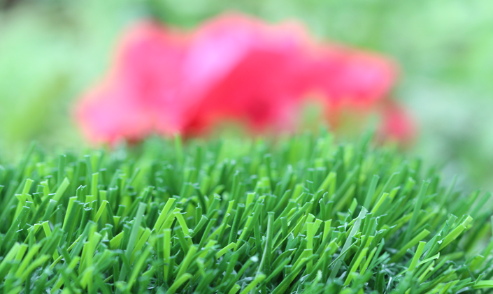 Artificial Grass Evergreen-80 Artificial Grass Ventura California