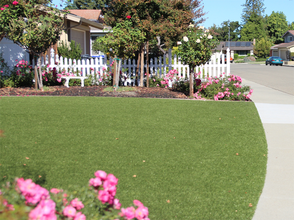 Faux grass tupman california gardeners landscaping ideas for front faux grass tupman california gardeners landscaping ideas for front yard workwithnaturefo