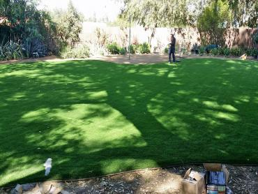 Artificial Grass Photos: Artificial Grass Dustin Acres, California Landscape Rock, Backyard Design