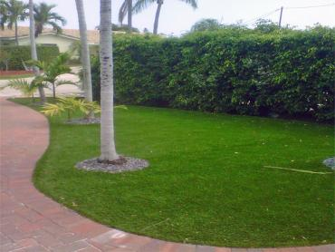 Artificial Grass Photos: Artificial Grass Installation Buena Park, California Lawns, Front Yard Landscaping Ideas