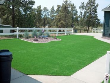 Artificial Grass Photos: Artificial Grass Installation Los Olivos, California Gardeners, Front Yard Landscaping