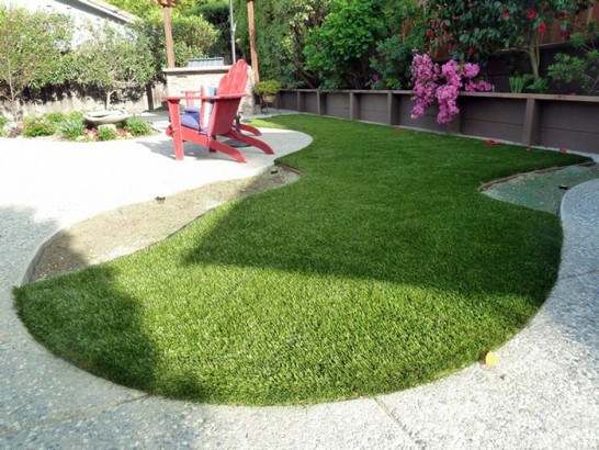 Artificial Grass Photos: Artificial Grass Keene, California Pet Paradise, Backyard Designs
