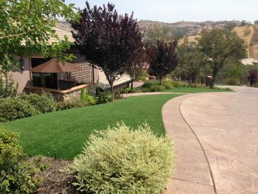 Artificial Grass Photos: Artificial Grass Monrovia, California Landscape Rock, Front Yard Landscaping