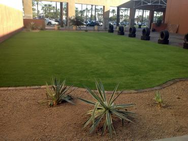 Artificial Grass Photos: Artificial Grass San Marino, California Landscape Ideas, Commercial Landscape