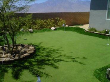 Artificial Lawn Fillmore, California Landscaping, Backyard Garden Ideas artificial grass