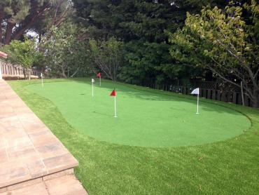 Artificial Grass Photos: Artificial Lawn Paramount, California Outdoor Putting Green, Backyard Design