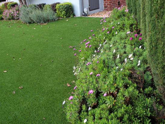 Artificial Grass Photos: Artificial Lawn Westmont, California Landscape Ideas, Front Yard Landscape Ideas