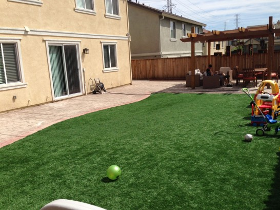 Artificial Grass Photos: Artificial Turf Cost La Verne, California Playground, Backyard Makeover