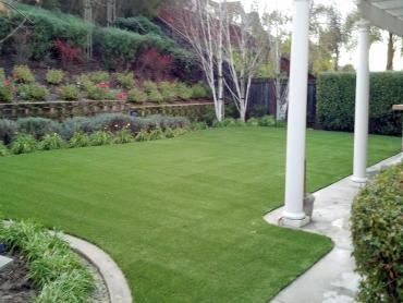 Artificial Grass Photos: Artificial Turf Cost Lost Hills, California Dog Pound, Backyard Landscaping Ideas