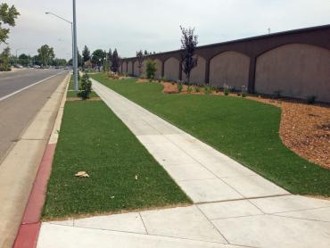 Artificial Grass Photos: Artificial Turf Cost Whittier, California Rooftop, Commercial Landscape