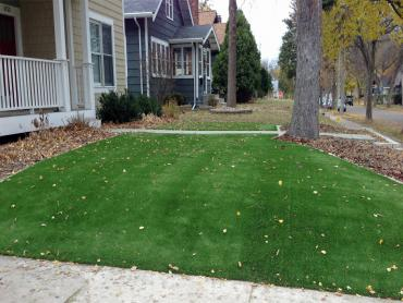 Artificial Grass Photos: Artificial Turf Industry, California City Landscape, Front Yard Landscaping Ideas