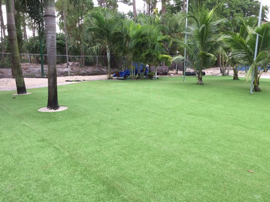 Artificial Grass Photos: Artificial Turf Installation Garden Grove, California Landscape Ideas, Commercial Landscape