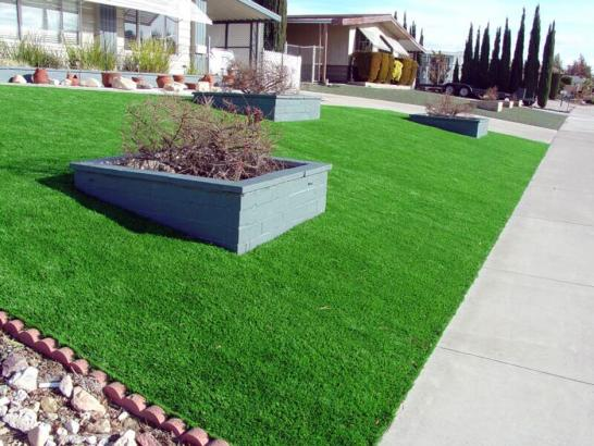Artificial Grass Photos: Artificial Turf Installation Monterey Park, California Landscaping Business, Front Yard Design