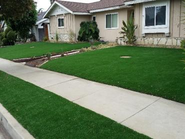 Artificial Grass Photos: Artificial Turf Willowbrook, California Rooftop, Front Yard Ideas