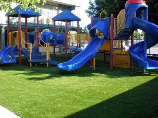 Artificial Grass Photos: Best Artificial Grass Glendale, California Lacrosse Playground, Commercial Landscape