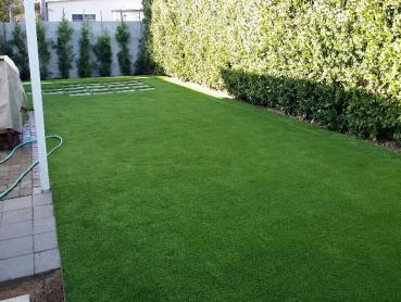 Artificial Grass Photos: Best Artificial Grass Lomita, California Fake Grass For Dogs, Backyard Ideas
