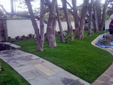 Artificial Grass Photos: Best Artificial Grass West Athens, California City Landscape, Front Yard