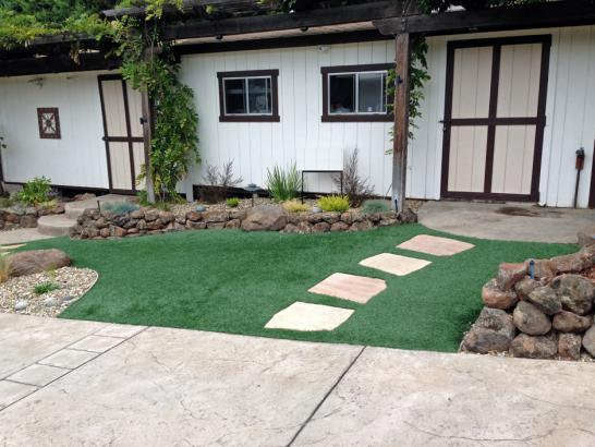Artificial Grass Photos: Fake Grass Carpet Fuller Acres, California Garden Ideas, Small Front Yard Landscaping