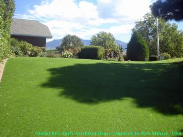 Artificial Grass Photos: Fake Grass Channel Islands Beach, California Cat Grass, Backyard Design