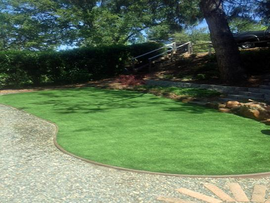 Artificial Grass Photos: Fake Grass Montclair, California Design Ideas, Backyard Design