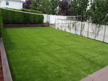 Fake Lawn Covina, California Home And Garden, Backyards artificial grass