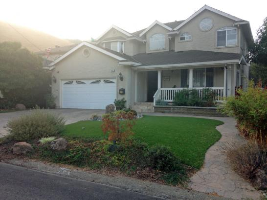 Artificial Grass Photos: Fake Lawn Simi Valley, California Landscaping, Front Yard