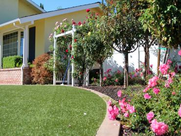 Artificial Grass Photos: Fake Turf Belvedere, California Landscaping Business, Front Yard