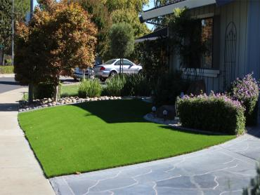 Artificial Grass Photos: Fake Turf East Pasadena, California Home And Garden, Front Yard