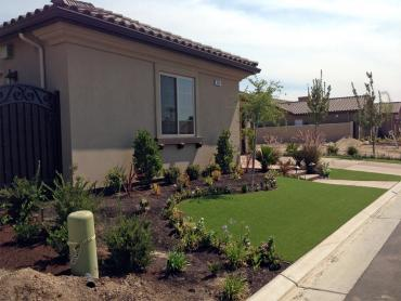 Artificial Grass Photos: Fake Turf Mira Monte, California Home And Garden, Front Yard Landscaping Ideas