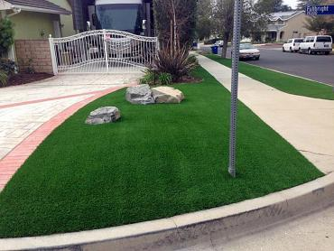 Artificial Grass Photos: Fake Turf Oceano, California Landscape Photos, Landscaping Ideas For Front Yard