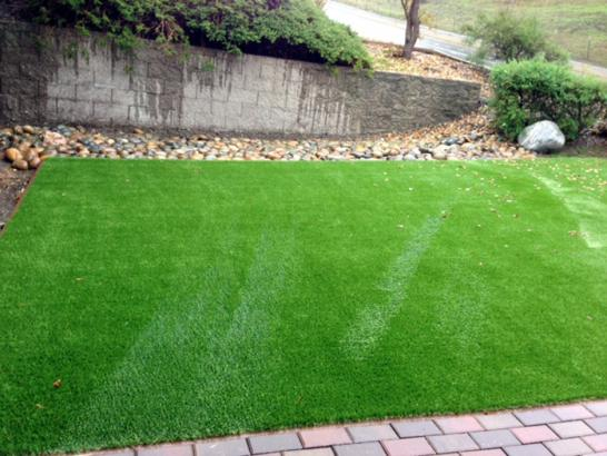 Artificial Grass Photos: Fake Turf Summerland, California Landscape Ideas, Small Front Yard Landscaping