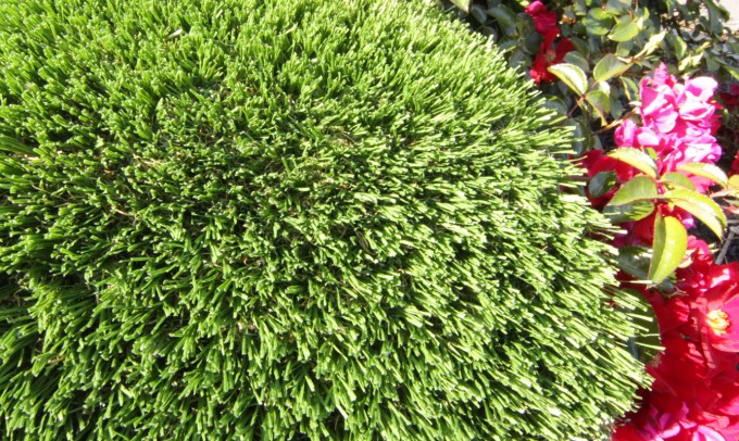 Hollow Blade-73 fakegrass Artificial Grass Ventura California