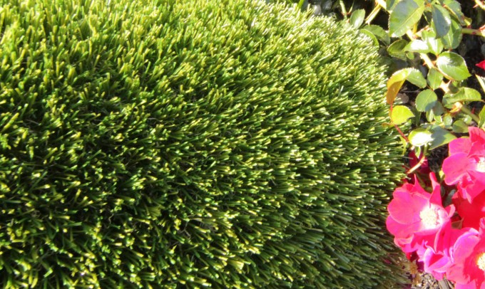V Blade-77 fakegrass Artificial Grass Ventura California