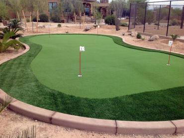 Artificial Grass Photos: Faux Grass Castaic, California Artificial Putting Greens, Backyard Landscaping