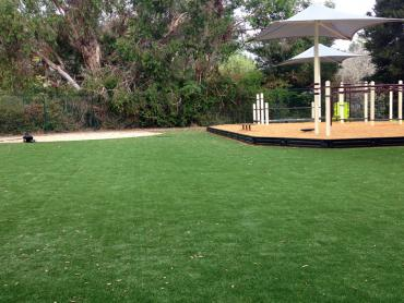 Artificial Grass Photos: Faux Grass Lebec, California Playground Flooring