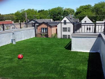 Artificial Grass Photos: Faux Grass Maywood, California Pet Grass, Deck