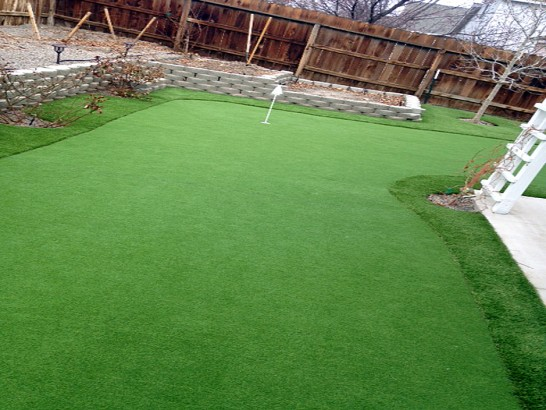 Artificial Grass Photos: Faux Grass Mission Hills, California Rooftop, Backyard Designs