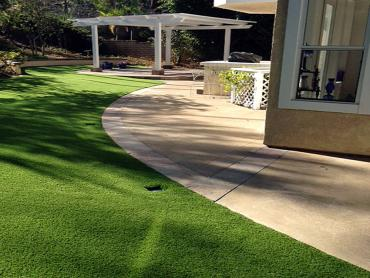 Artificial Grass Photos: Faux Grass Rosemead, California Grass For Dogs, Landscaping Ideas For Front Yard
