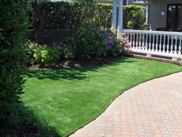 Artificial Grass Photos: Faux Grass Santa Monica, California Landscape Design, Front Yard Ideas