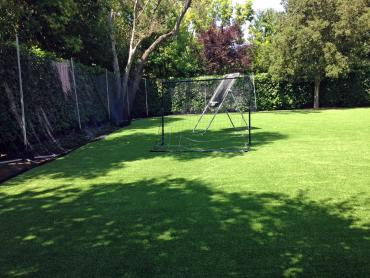 Artificial Grass Photos: Grass Carpet Channel Islands Beach, California Garden Ideas, Backyard Landscaping