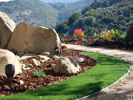 Artificial Grass Photos: Grass Carpet Cudahy, California Gardeners, Front Yard Landscaping Ideas