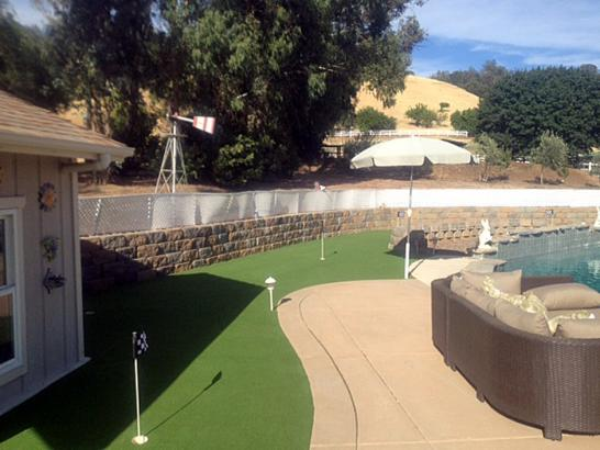 Artificial Grass Photos: Grass Carpet Pinon Hills, California Gardeners, Backyard Landscaping Ideas