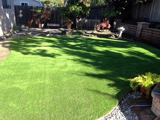 Artificial Grass Photos: Grass Carpet West Whittier-Los Nietos, California Design Ideas, Backyard Designs