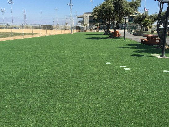 Artificial Grass Photos: Grass Installation Chino Hills, California Design Ideas, Parks