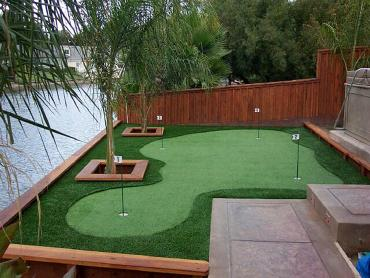 Artificial Grass Photos: Grass Turf Beverly Hills, California Home Putting Green, Small Backyard Ideas