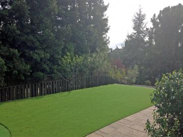Artificial Grass Photos: Grass Turf Palmdale, California Lawns, Backyard Design