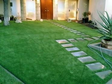 Artificial Grass Photos: Grass Turf Walnut Park, California Garden Ideas, Front Yard Design