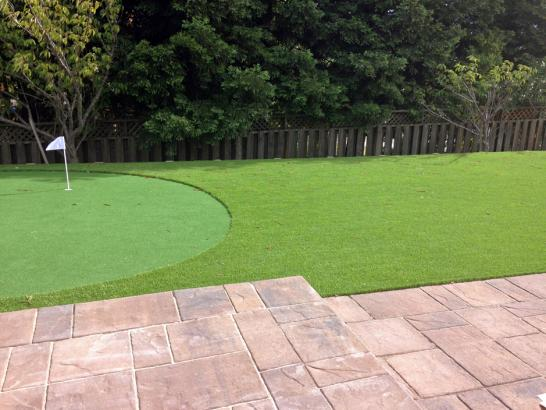 Artificial Grass Photos: Green Lawn Chino, California Roof Top, Backyard Designs