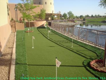 Green Lawn Saticoy, California Home Putting Green, Backyard Landscape Ideas artificial grass